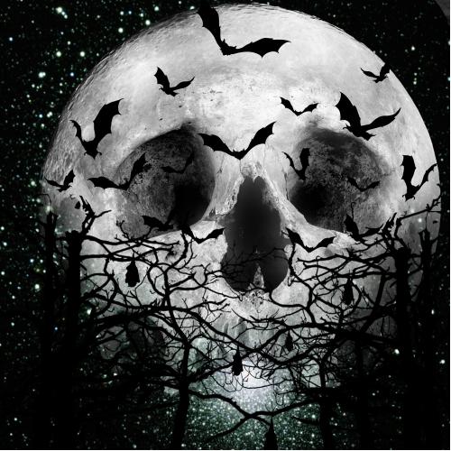 Skullectic Moon
